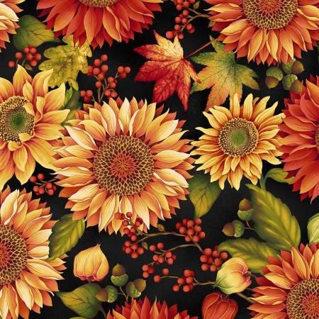 Autumn Album Black Sunflower