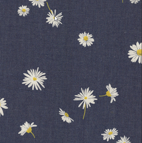 Ragged Daisies Printed Denim 54