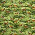 Bringing Nature Home - Nature Deer Scenic