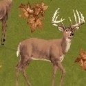 Forest - Green Deer