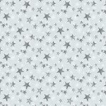 Light Grey Stars  - Friendly Gathering
