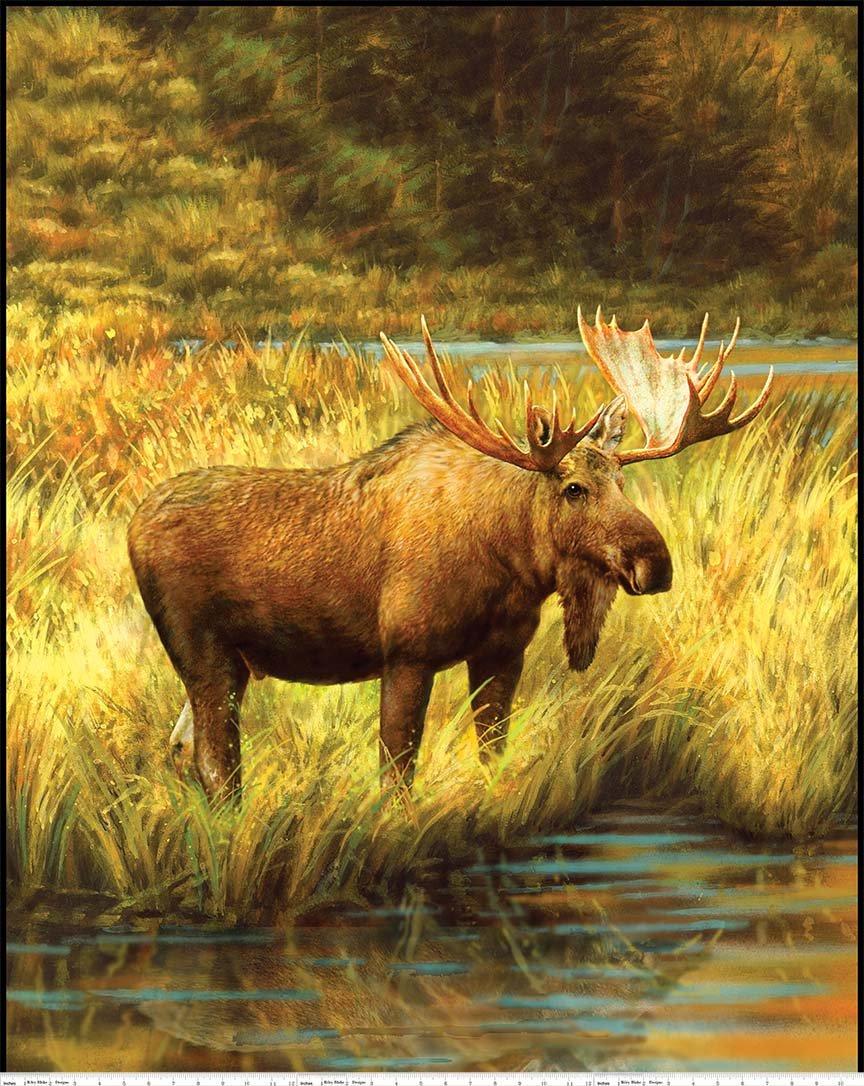 Moose Majestic Digital Panel
