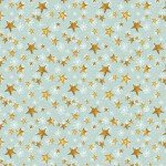 Teal Stars  - Friendly Gathering
