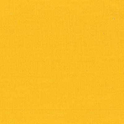 Painter's Palette - Pencil Yellow