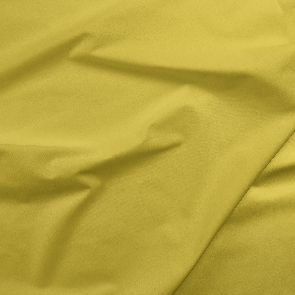 Painter's Palette - Sulfur
