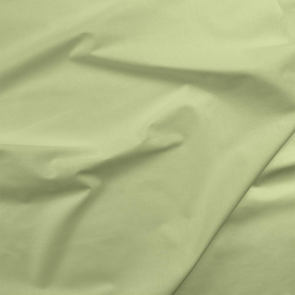 Painter's Palette - Lime Mist