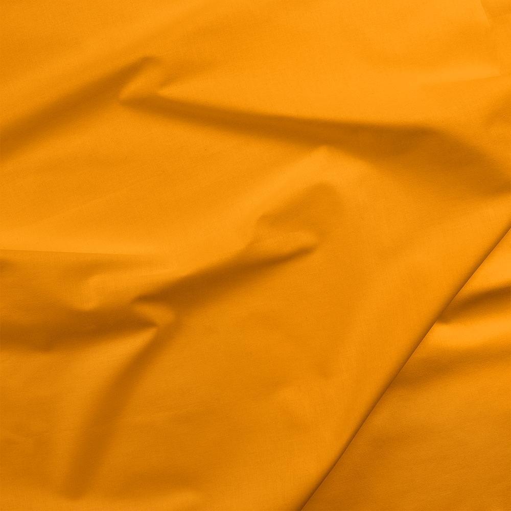Painter's Palette - Clementine