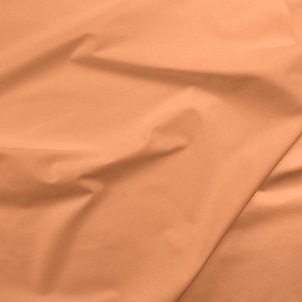 Painter's Palette - Apricot