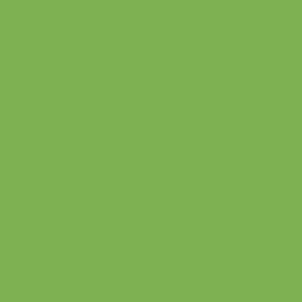 24/7 Solid- Leaf