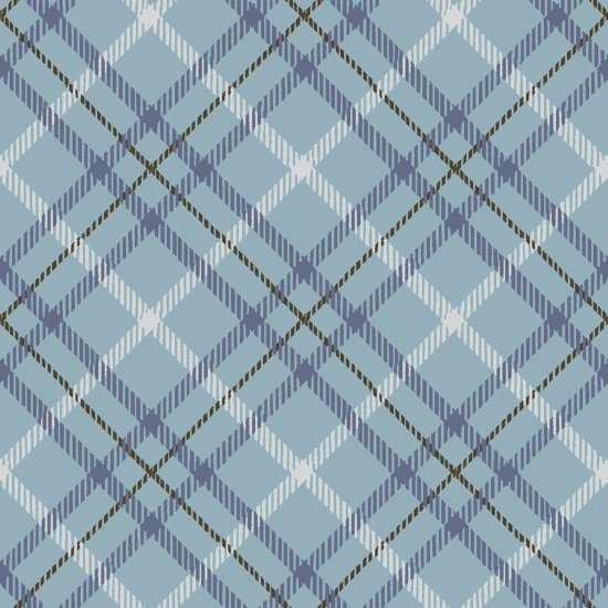 Hold Your Horses blue plaid