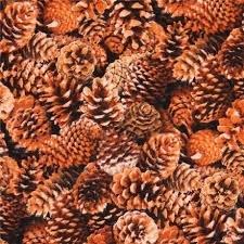 Landscape Medley  large pinecone