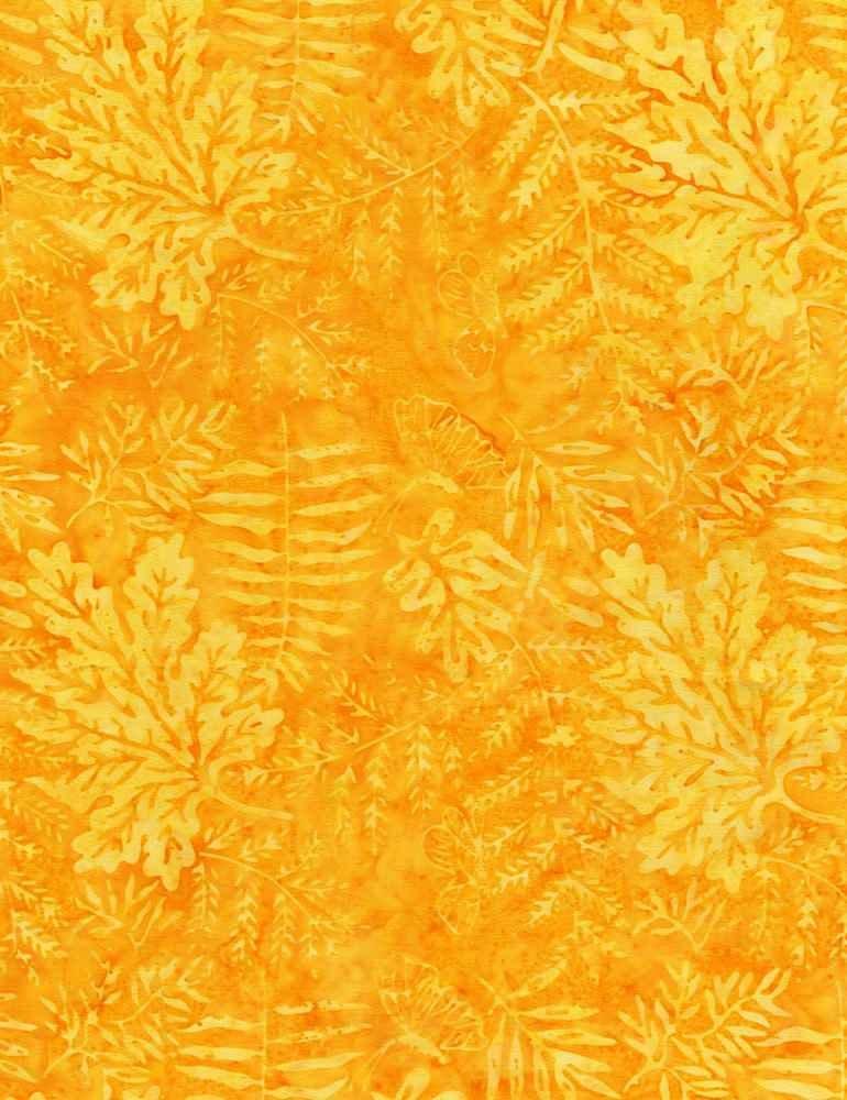 Tonga B7781-Daffodil
