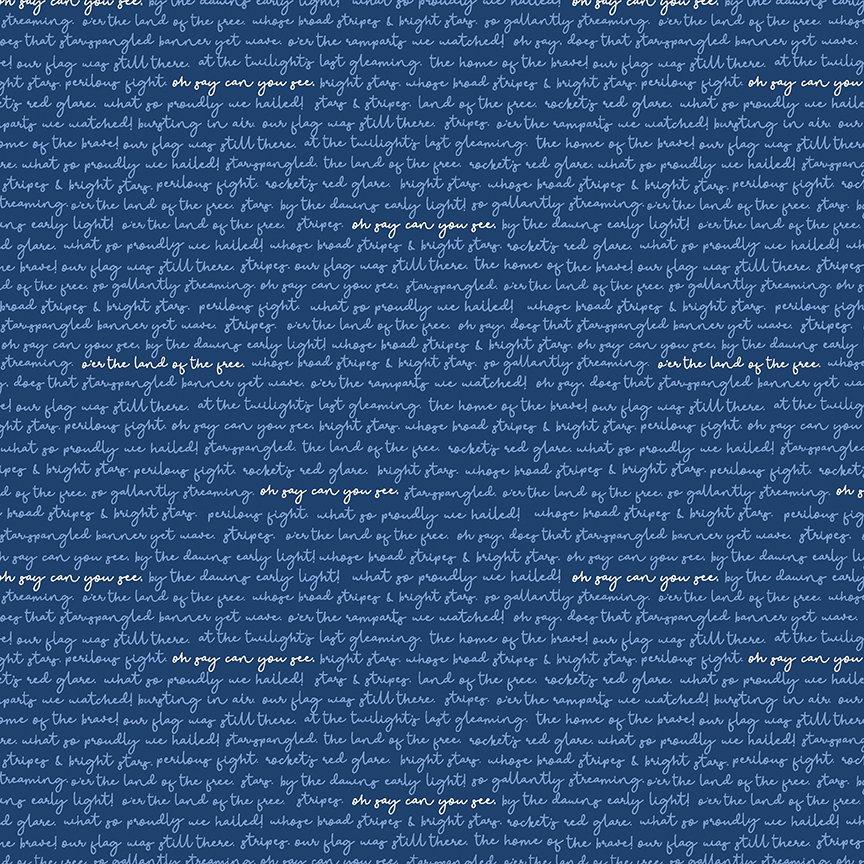 Land of Liberty  C10566-NAVY