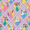 Disney Princess (85100103-01)