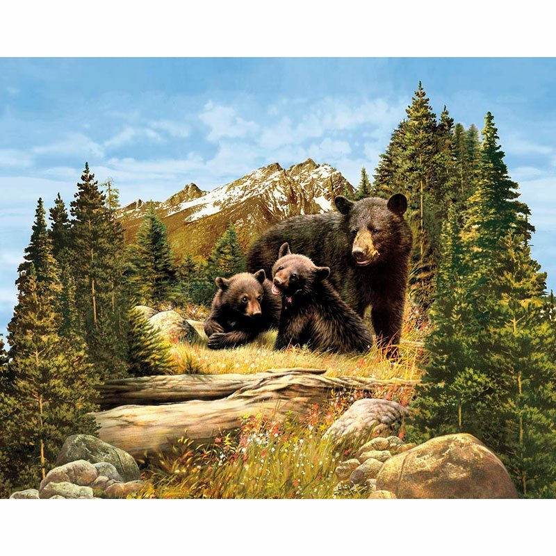 Majestic Outdoors Bear