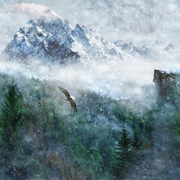 Call of the Wild  P4359-367-Aspen