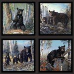 Honey Tree Black Bear Panel 6900E-BLK
