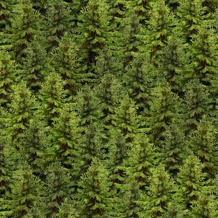 Festive Forest Green Packed Trees (F10313)
