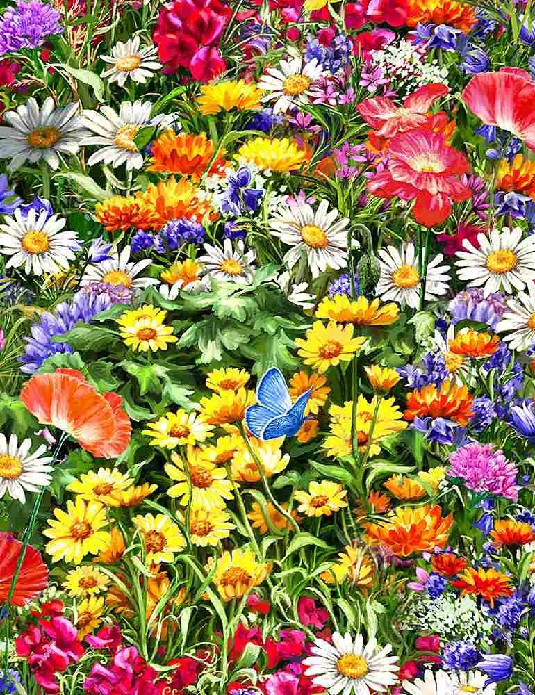 Flowers florals botanicals blooms (W10849)