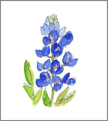 Bluebonnet Single FL029