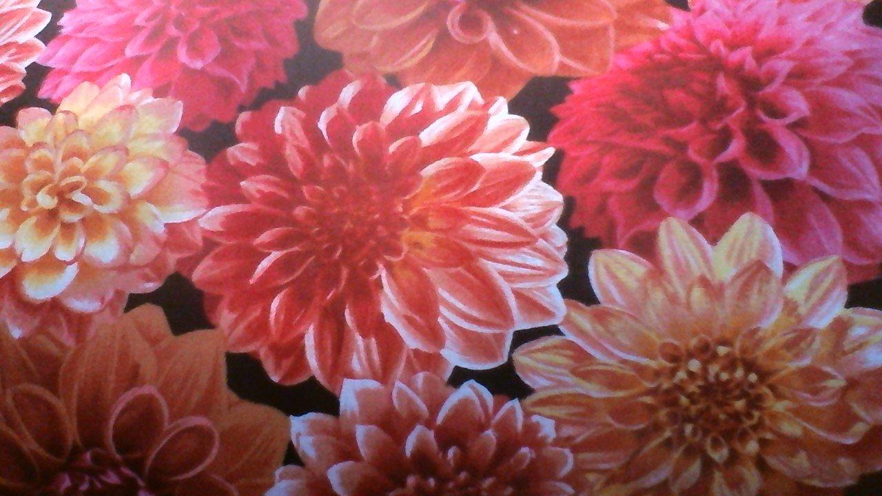 04805 - 10 flowers