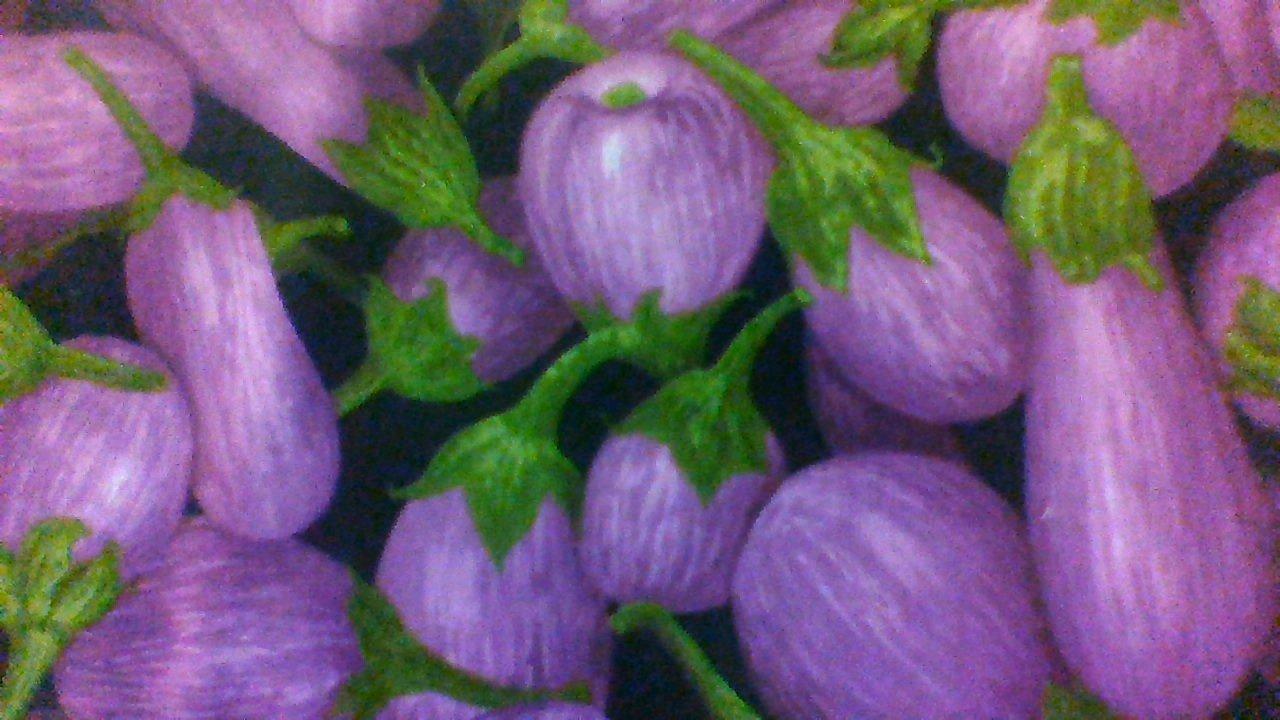 * food Eggplant