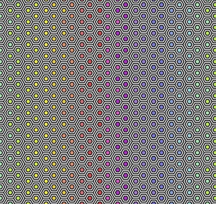 Free Spirit - Tula Pink - Tula Linework Hexy Rainbow Ink