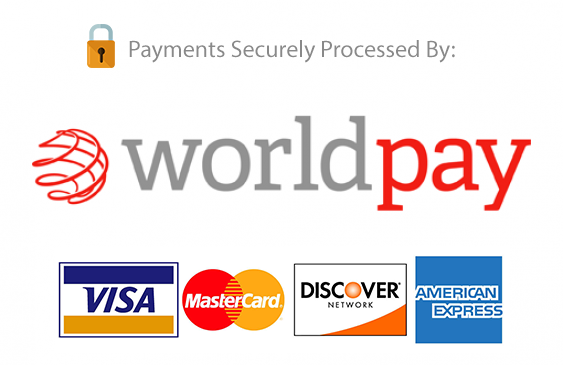 online payment secure processors