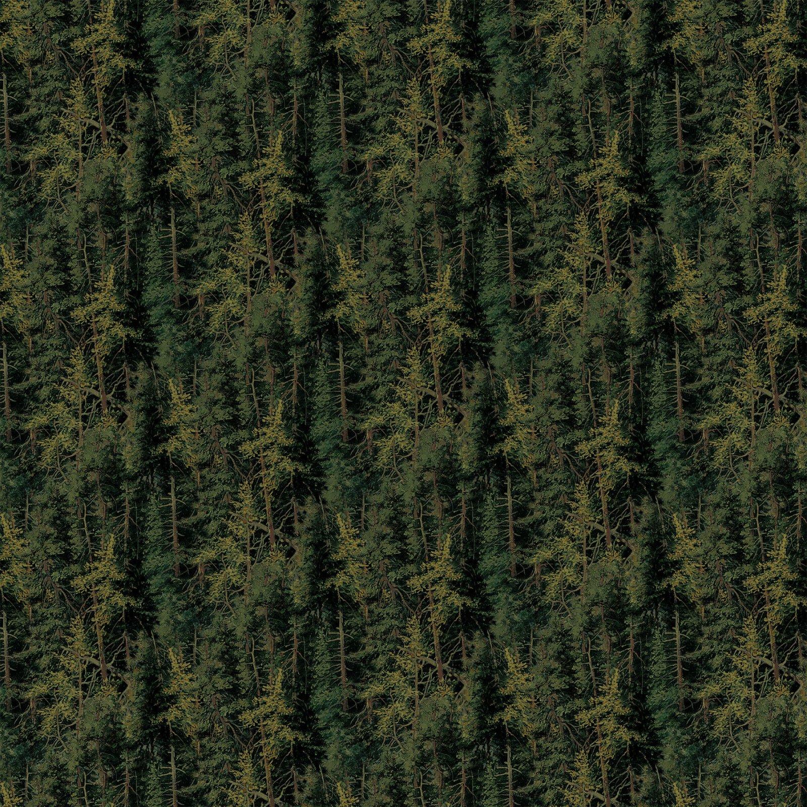 Naturescapes  21408-79