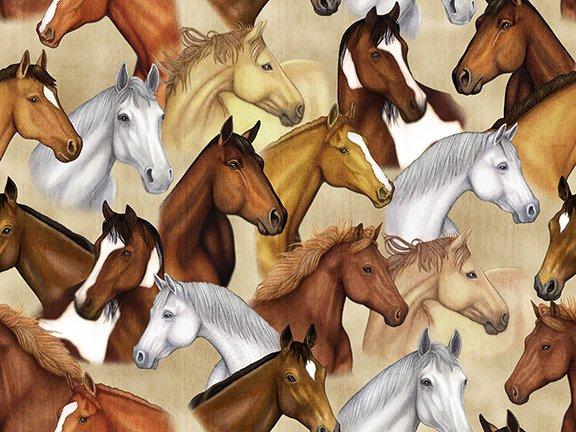 Sunset Mustang  26483 E