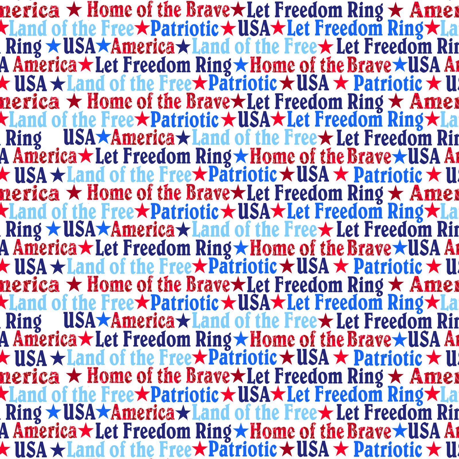 America Home of the Brave  4629-01