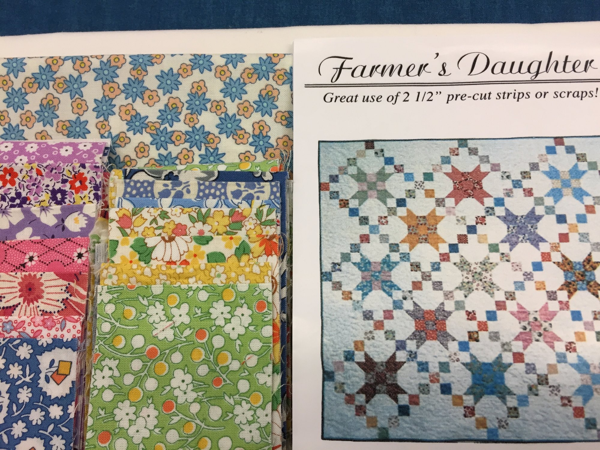 Farmer's Daughter Quilt Kit featuring 30's Prints