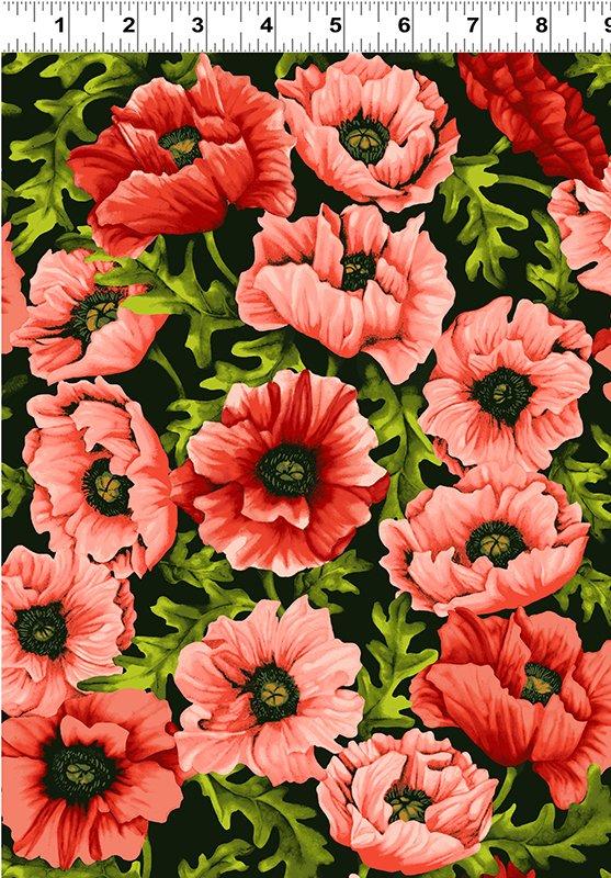 Poppy Poetry  Y2658-39