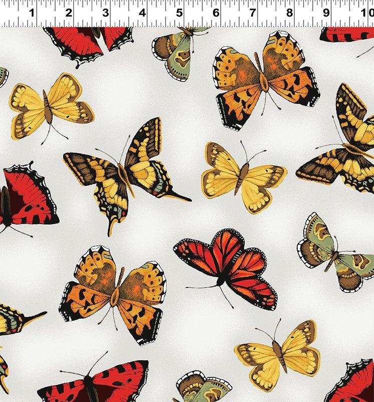 Poppy Poetry  Y2659-116