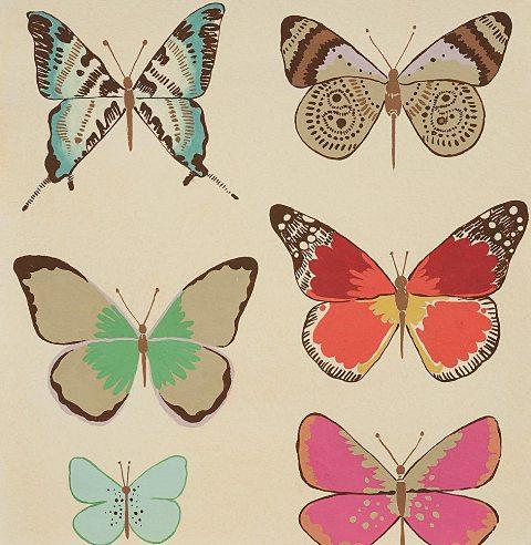 Frieda - El Tiempo de Mariposa