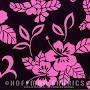 Hoffman - Pink & Black - BBHC1048 PINK