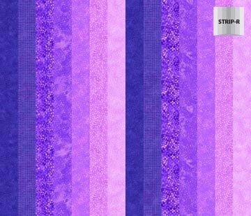 Northcott - Ambience Violet Stripe