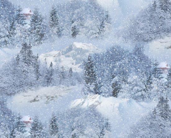 Elizabeth Studios Landscape Medley 529 Snow