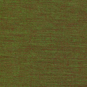 Studio E Fabrics - Peppered Cotton: Begonia Leaf Green