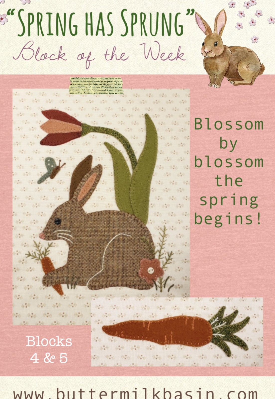 Spring Has Sprung Block #4 & 5 * Pattern & Kit