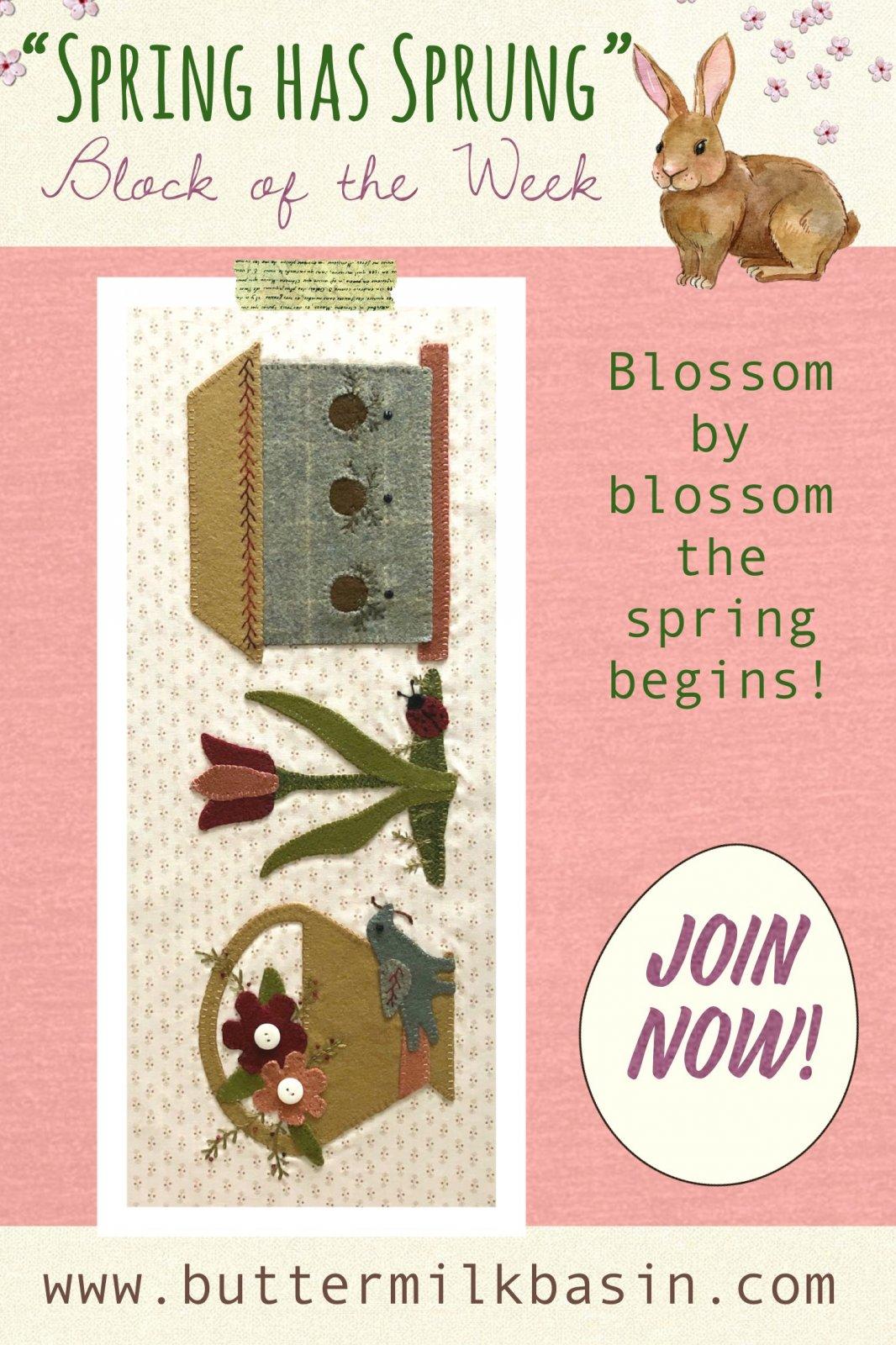 Spring Has Sprung Block #6 * Pattern & Kit