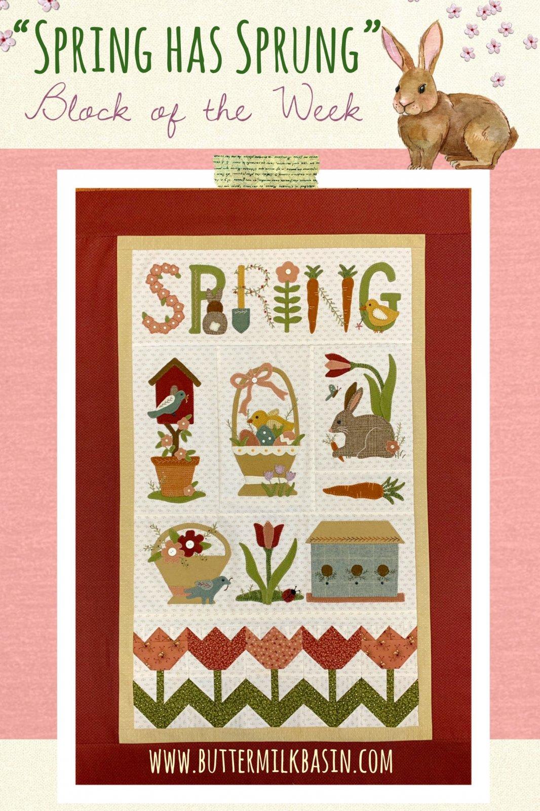 Spring Has Sprung Quilt * Finishing Kit