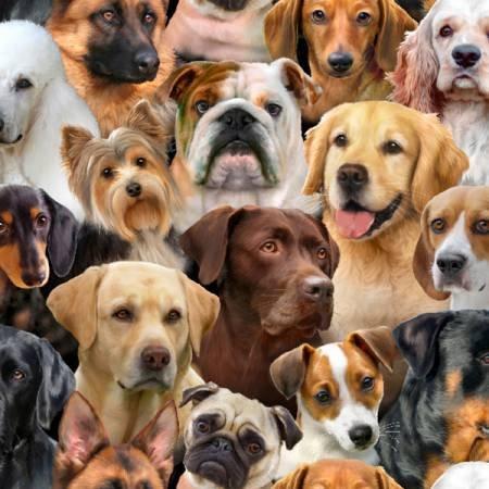 Dog Breeds  1312Black