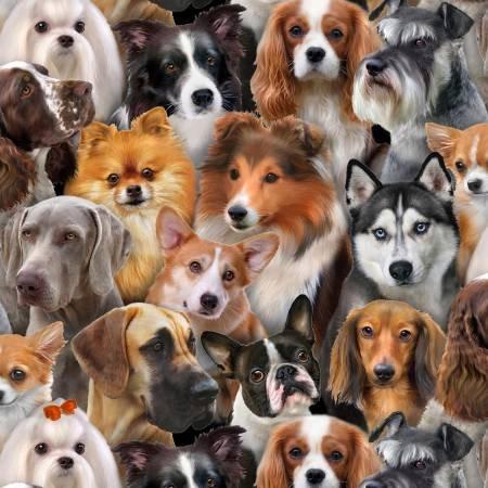 Dog Breeds  1314Black