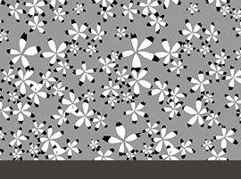 Grey-Juno 23643 K