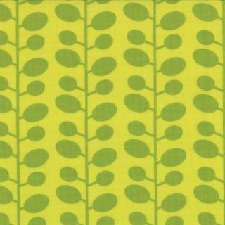 Mixed Bag Bean Stalk Lime