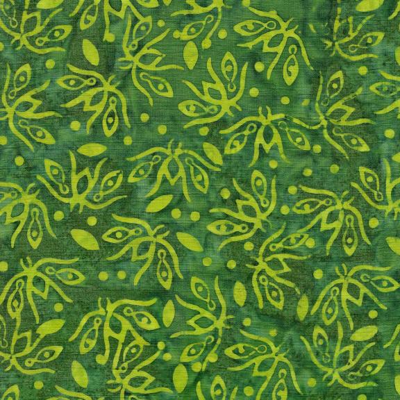 Kismet Dragonfly-Seaweed 821902636