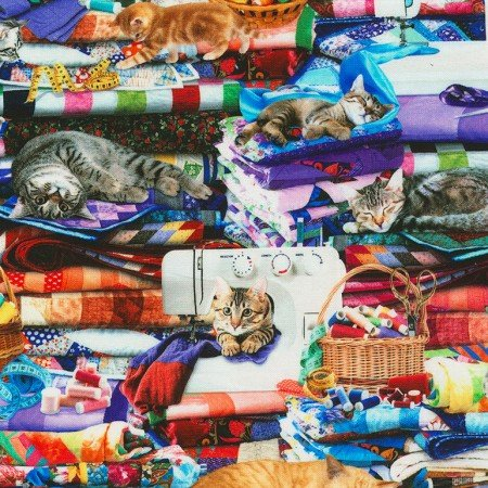 Cats on Quilts, Multi CD-6878