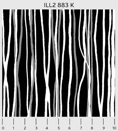 Black-White Illustration 2