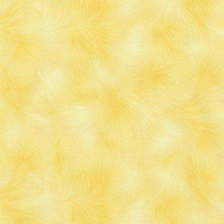Viola Lemon, Texture C-4459